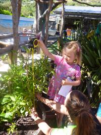measuring-our-vegetables-web